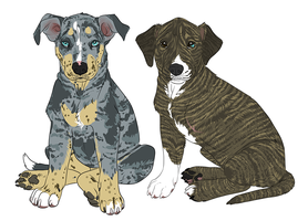 Catahoula Puppy Auction [sold] by deadonarrival