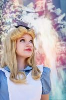 Alice in Wonderland 6 by AliceInTheTARDIS