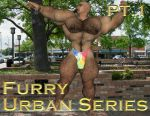 [B3] Shannon Cover [Urban Pt1] [Furry] by Bodybeef