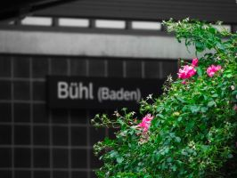 Bloomin tree on train station by psyviant