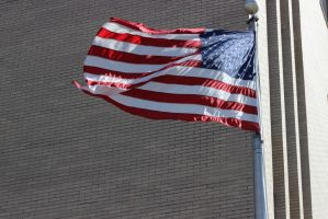 flag day by bagera3005