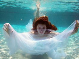 The Submerged Curio by gokate1