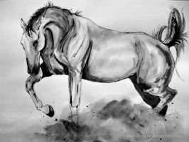 Wash drawing- Horse by Ennete