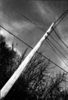 Phone Pole by SlackerProdigy