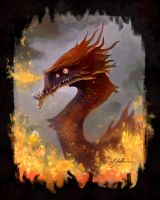 Fire dragon sketch by Manweri