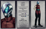 Character Sheet: Echelon by cosmogyral-delirium