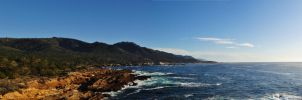 point lobos by nickteezy408