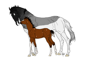 Mare and Mystery Foal Adopt CLOSED by DaretoDream12423