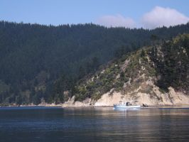 New Zealand 2014- boat 3 by Carlie-NuclearZombie