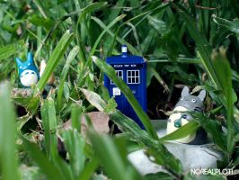 Totoro's Tardis by meaches