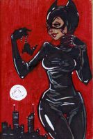 CATWOMAN by Ethereal-Mind