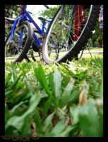 My Sweet Ride, in the park by gwend-n