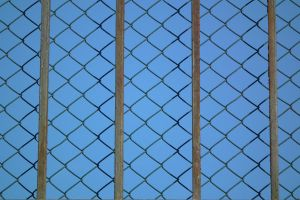 Wired Fence by Limited-Vision-Stock