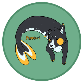[OPEN] Merpup: Border Collie/Orca Mix by geckobud