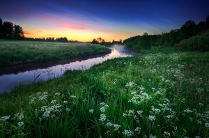 Summer Night by MikkoLagerstedt