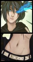 BRS-details by Noiry