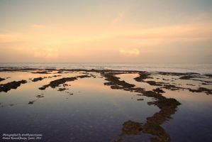 scenery by abas19