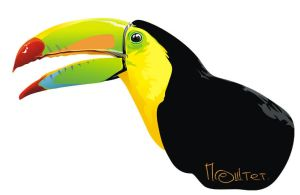 Tucan by llaiii