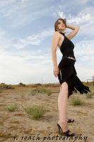 Elegance in the Desert by NicoleBrune