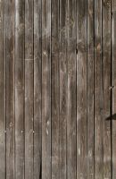 Wood Texture - 12 by AGF81