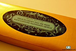 DIY Ollivander's Wand Box by SugiAi