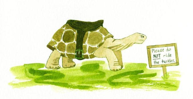 Please Do Not Ride The Turtles by ankhana