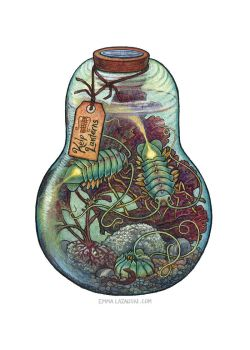 Bottled: Kelp Lanterns by emmalazauski