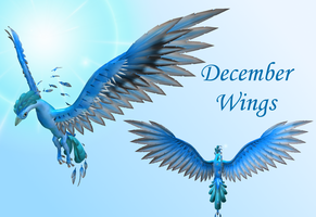 December Wings by Nabesima