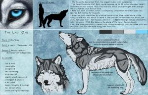 Kiba Telay - Reference Sheet by Khalliys