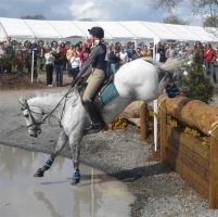 Ballygraffan Horse Trials: 5. by Courtiepona