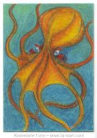 ATC ACEO Octopus by tursiart
