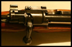 Bolt-action by ChristofferB