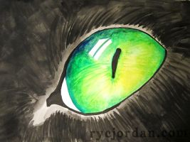 Ink and Gouache Cat Eye by theperfectlestat
