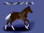 Calculated Risk-Foal Ref-Bid by patchesofheaven74