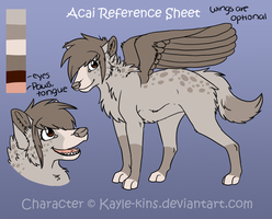 Acai Reference by Kayle-kins