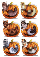 Pumkincat Adopts (CLOSED) by DancingfoxesLF
