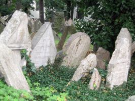 the old jewish cemetery 23 by Meltys-stock