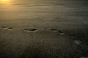 Footprints by Doumanis