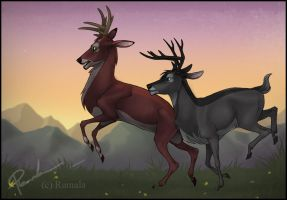 Young Bucks by Ramala