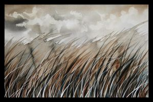 grass_ by gapinska