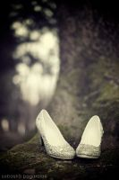 Cinderella Shoes 2 by Costurero-Real