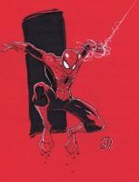 Con Spidey Color paper by JoeyVazquez