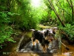 a Dog in Oil by SmurFFF1971