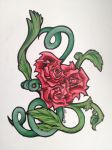 Roses by charmie