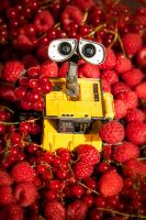 Berries - Wall.E by strehlistisch