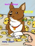 Much Ein Very Doge by ScuttlebuttInk