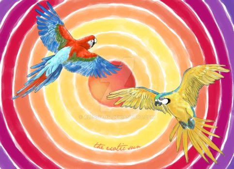 Studying the colors: Parrots! by AlessiaHV