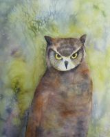 Great Horned Owl by seadworp