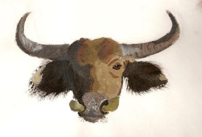 Cape Buffalo by inner-etch