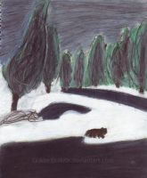 Wolf in the Snow. by GoldenBulletx